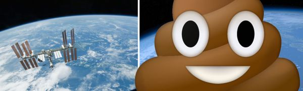 Sleep, eat and poop, in Space!